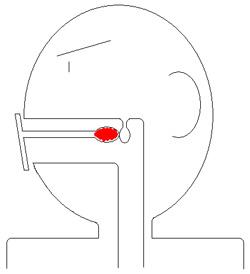 マスク想像図2